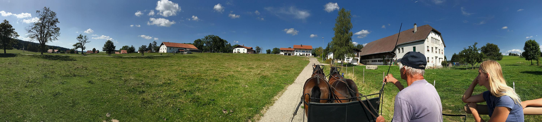 Les Cerlatez promenade en brak attelé avec deux chevaux